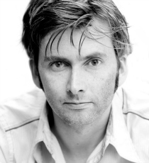 david tennant how to train your dragon audiobook